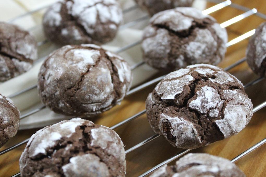 Biscoitos de Chocolate & Cacau - Devaneios de Chocolate